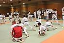 31 открытый кубок Японии по коиски каратэ