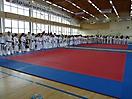 Школьная спортивная лига единоборств 2014