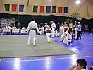Открытый Кубок г. Уфы по Спортивному контактному каратэ